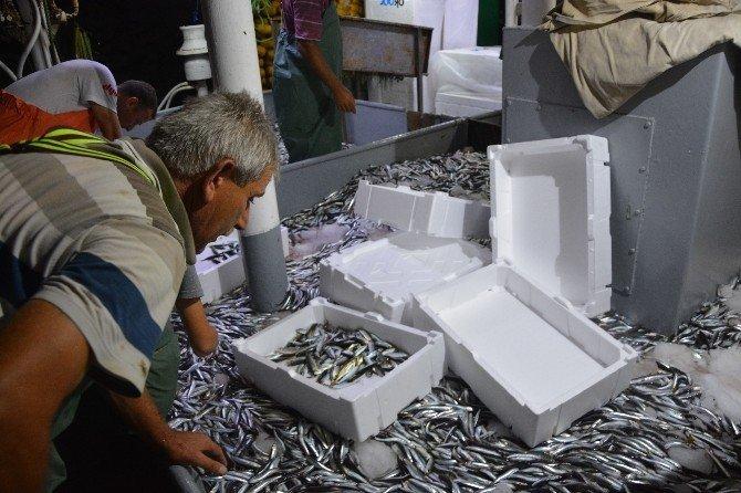 'Vira Bismillah' diyen balıkçı esnafının ilk geceden yüzü güldü