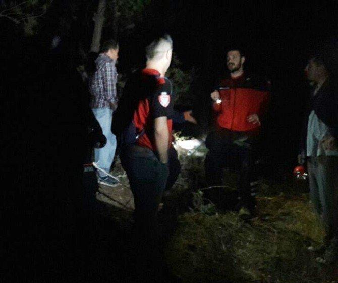 Odun toplamaya giden kişi ölü bulundu