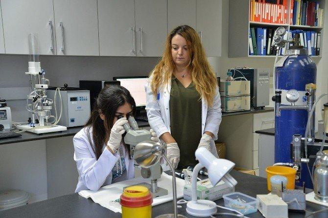Uludağ Üniversitesi, depresyonu yenen molekül buldu