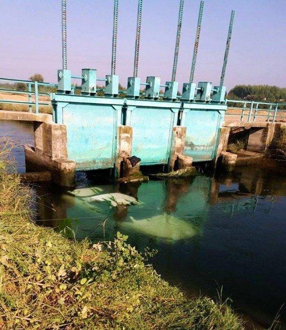 Otomobil sulama kanalına düştü: 1 ölü