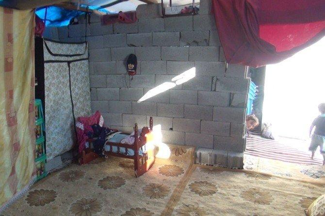 Barakada yaşayan Nusaybinli ailenin dramı
