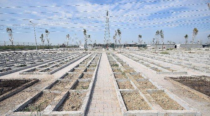 İzmir'in ilk hayvan mezarlığı hazır
