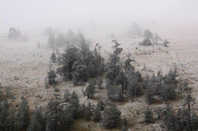 Kartalkaya'ya sezonun ilk karı yağdı