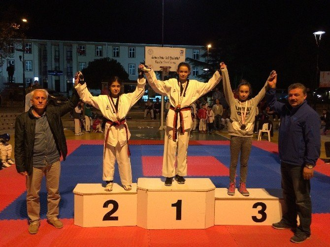 Demokrasi şehitleri adına taekwondo turnuvası düzenlendi