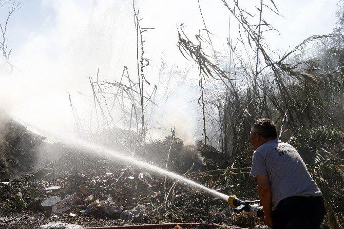 Yangında 30 dönüm ormanlık alan kül oldu