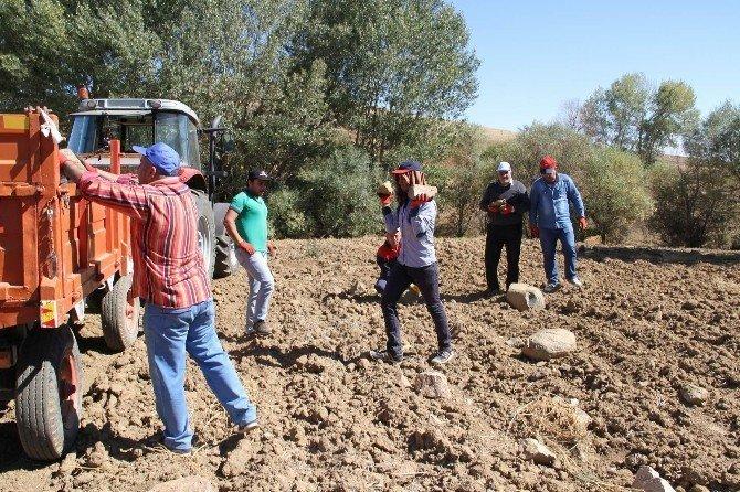 Yozgat çiftçisi taş toplama makinesi istiyor