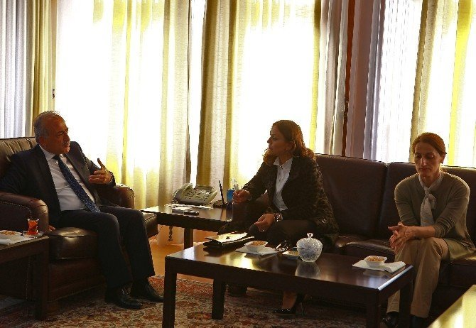 KADEM Genel Başkanı Yılmaz, Rektör Çomaklı'yı ziyaret etti