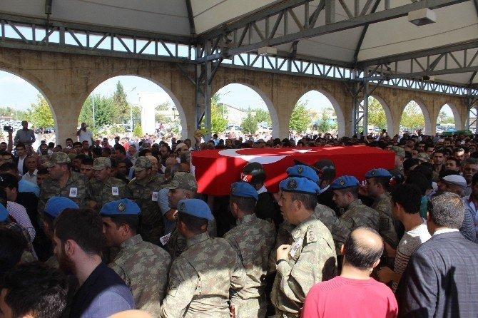 """Şehit babasından askere: """"Kurban olurum size ağlamayın"""""""