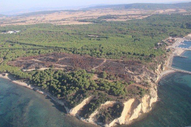 Çanakkale'de 2016 yılında 94 hektar alan yandı