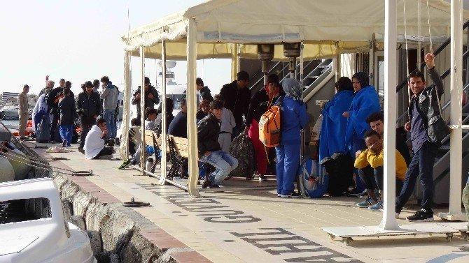 Ayvacık'ta 48 kaçak göçmen yakalandı