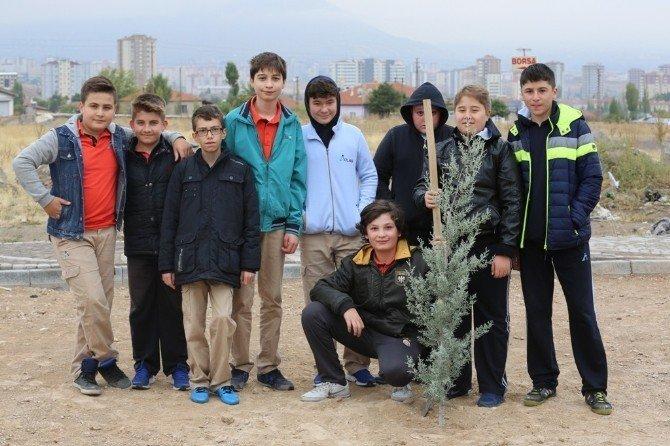Melikgazi'de sonbahar ağaçlandırma çalışmaları başladı