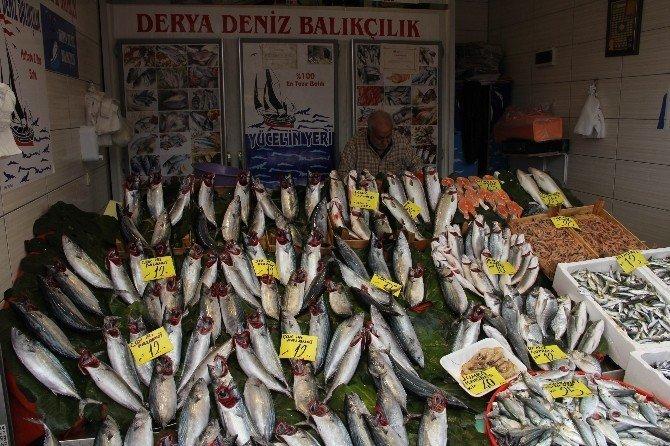 Rüzgar, yağmur ve fırtına balık fiyatlarını etkilemedi