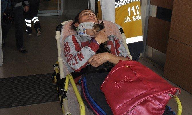Yaralı kadın sürücü, kedisini hastanede bile kucağından bırakmadı