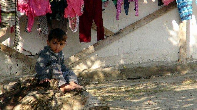 Suriyeli ve yardıma muhtaç ailelere gıda yardımı