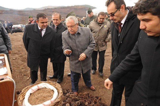 34 Milyon tohum toprakla buluştu