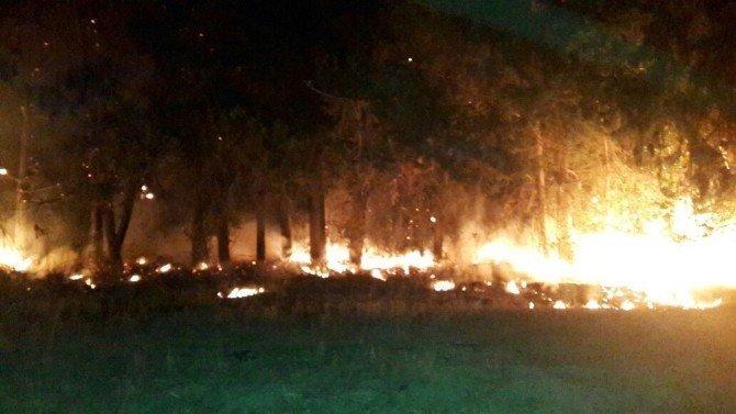 Aksaz'da yangın korkuttu