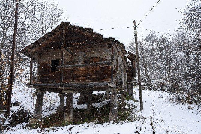 Sinop'ta kar yağışı