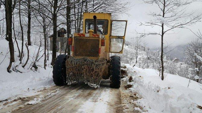 Trabzon'da karla mücadele çalışmaları başladı