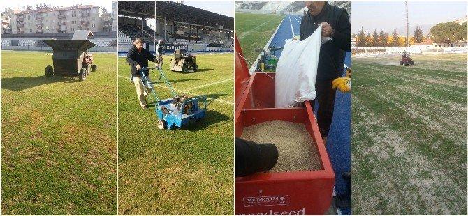 Adnan Menderes Stadı kupa maçlarına hazırlanıyor