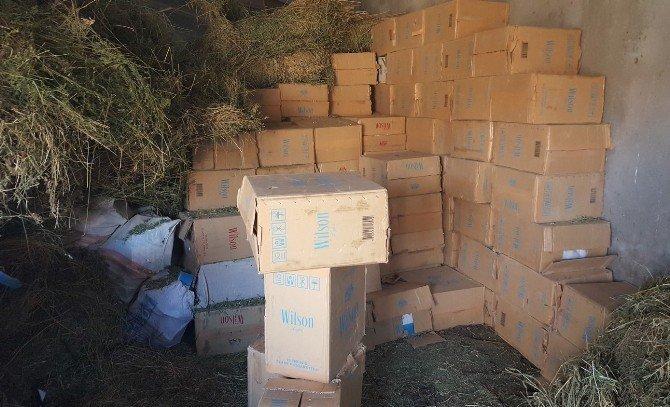 1 milyon paket kaçak sigara ele geçirildi