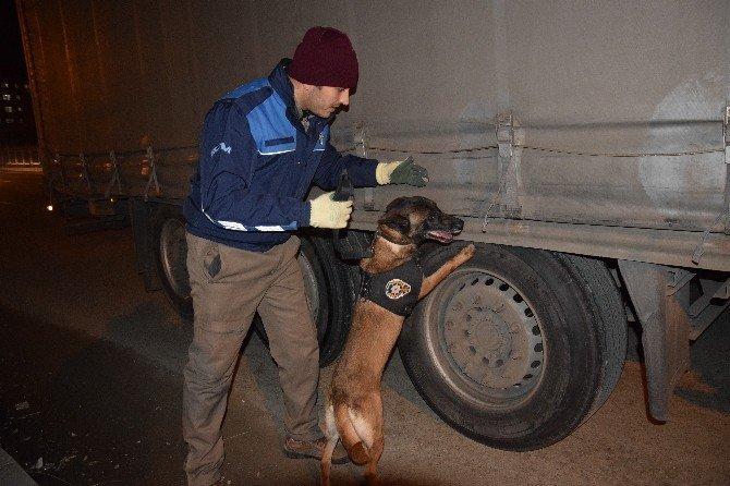 Giresun'da 600 polis ile 'Huzur' uygulaması