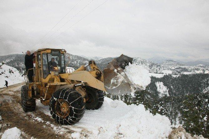 Adana'nın 5 ilçesinde karla mücadele