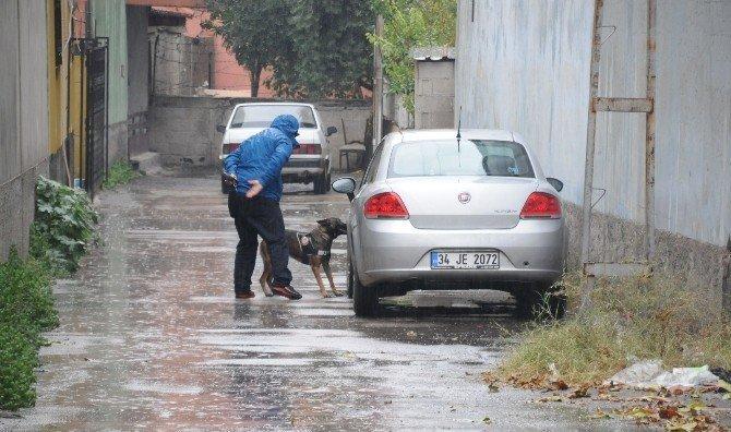 Adana'da 'ikiz plaka' alarmı