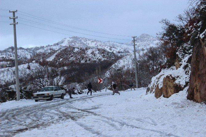 Aydın'da kar sevinci