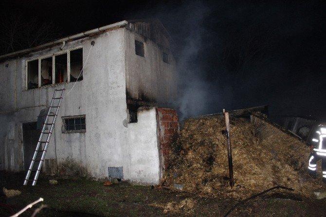 Kocaeli'de 500 balya samanlık alev alev yandı
