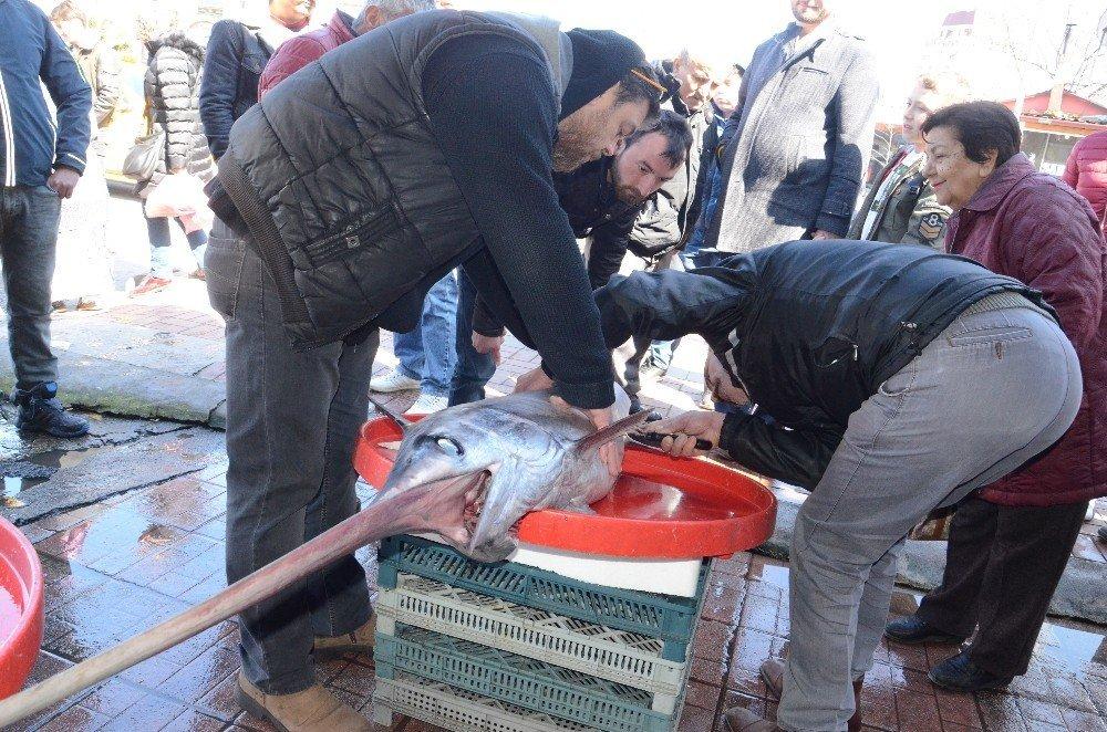 2 metre boyunda kılıç balığı yakalandı
