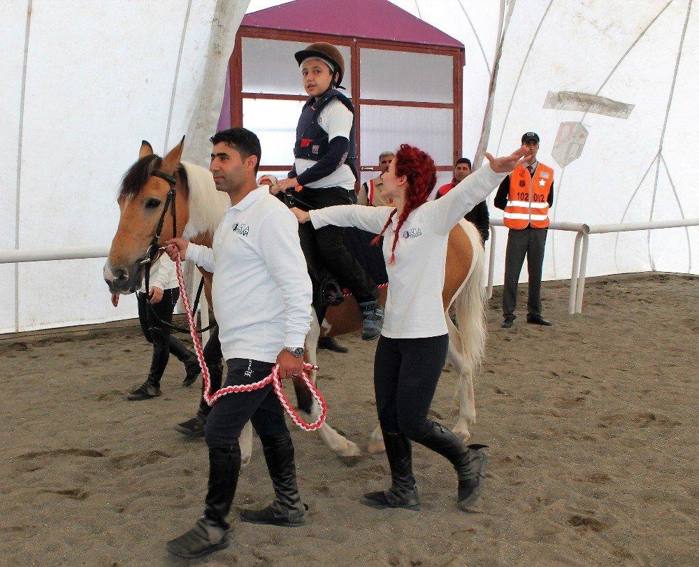 Elazığ'da atla terapi dönemi