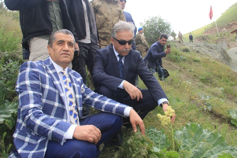 "Hakkari'de ""2. Uçkun festivali"" düzenlendi"