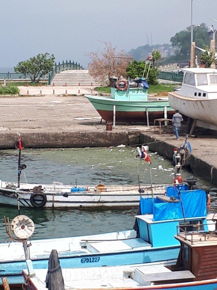 Akçakoca Balıkçı barınağında kirlilik