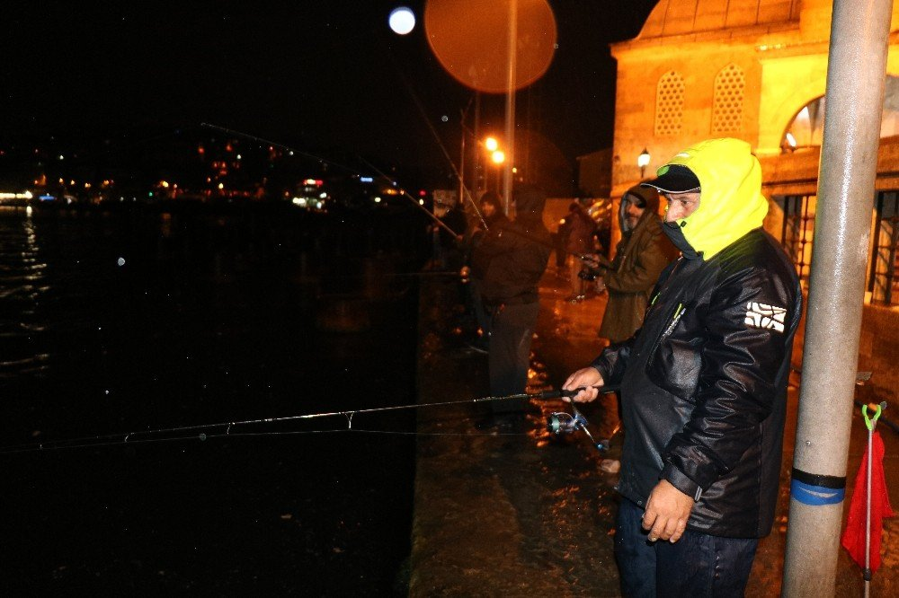 Sağanak yağmur Boğaz'daki olta balıkçılarına yaradı