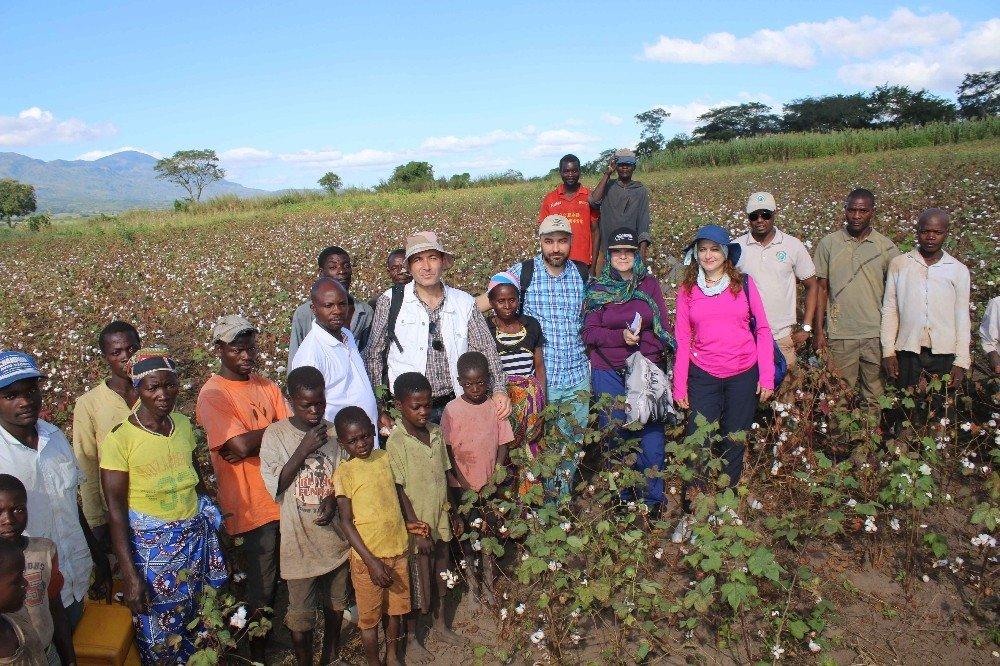 Türkiye ve Mozambik arasında pamukçuluk alanında işbirliği
