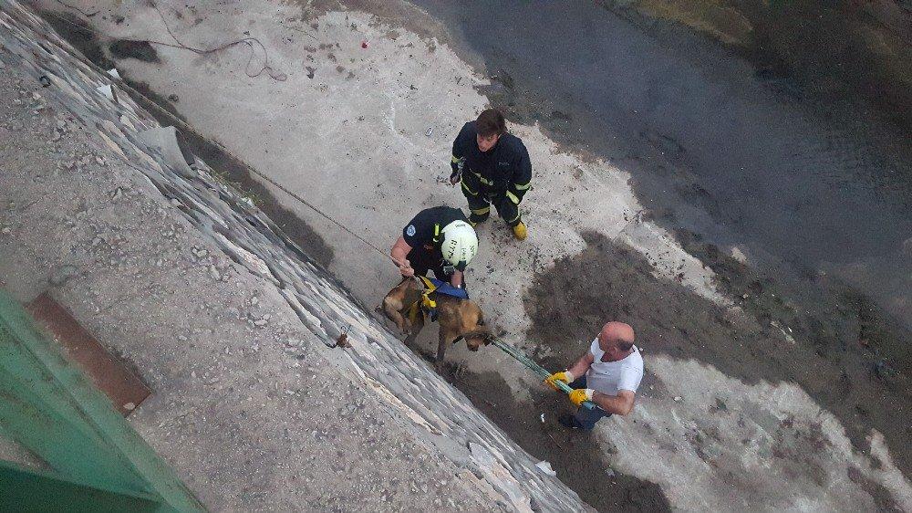 Su kanalında mahsur kalan köpek kurtarıldı