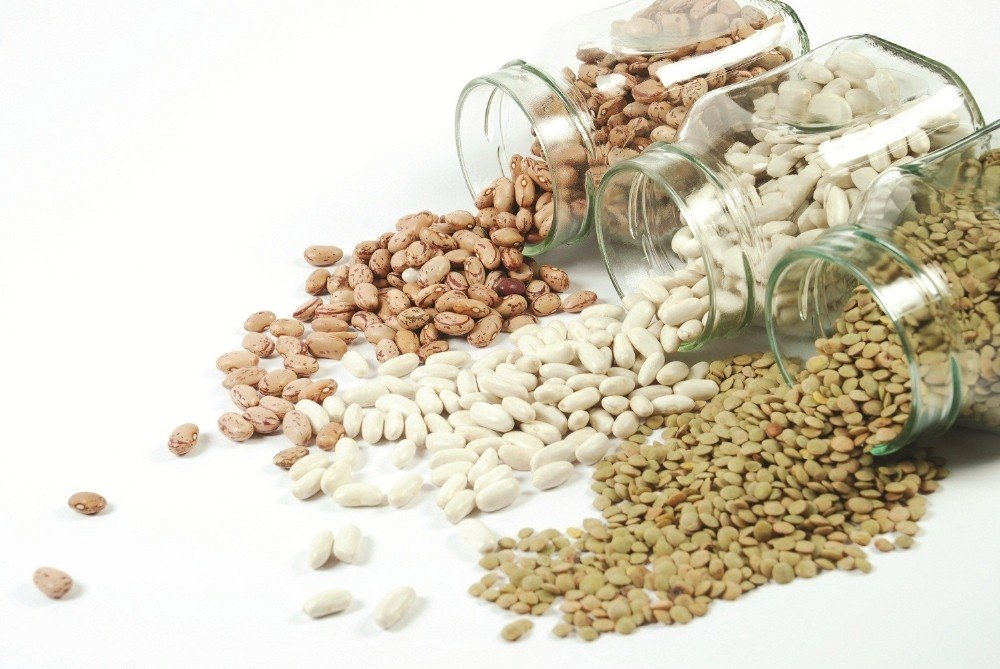 Ortadoğunun gıda ihtiyacını Güneydoğu karşılıyor