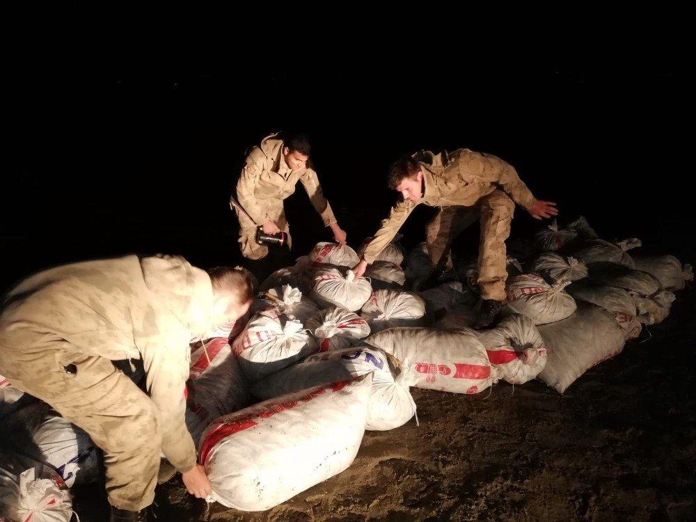 Van'ın Erciş ilçesinde 9 ton balık ele geçirildi