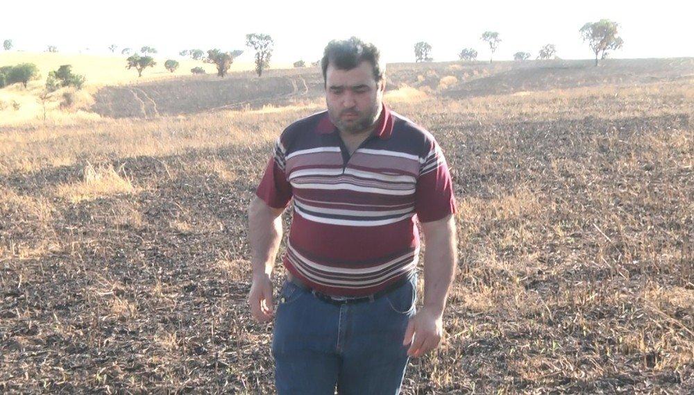 Mahsulü tarlada yanan çiftçi olayın araştırılmasını istiyor