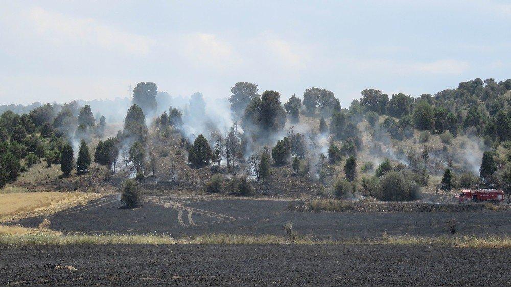 Konya'da ormanlık alana sıçrayan yangın