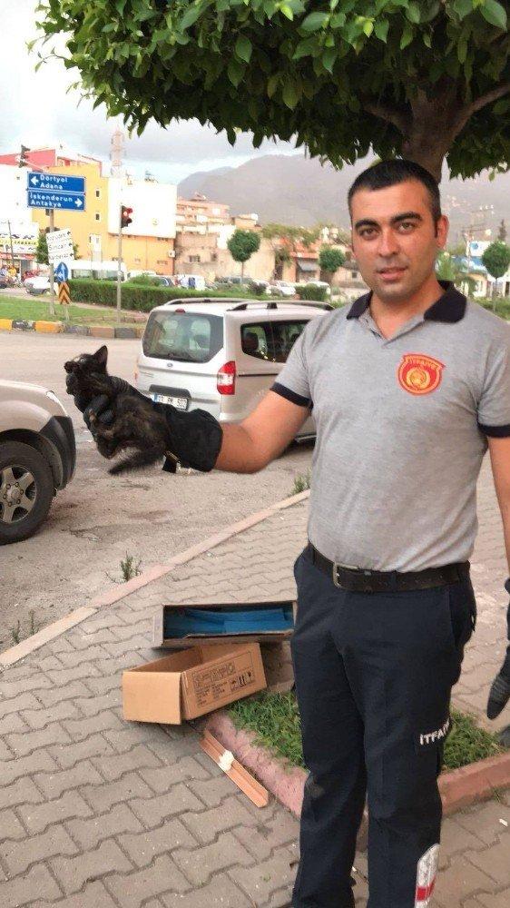 Aracın motor bölümünde sıkışan kediyi itfaiye kurtardı