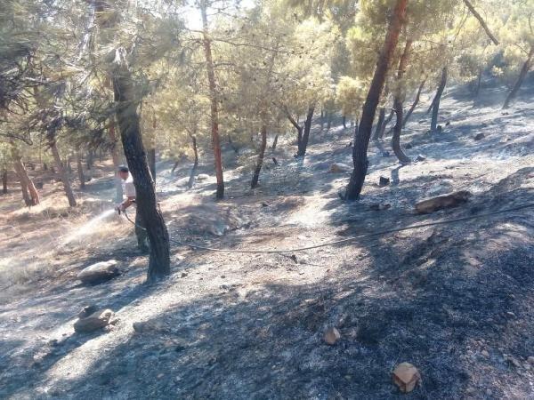Cinderes'teki orman yangını