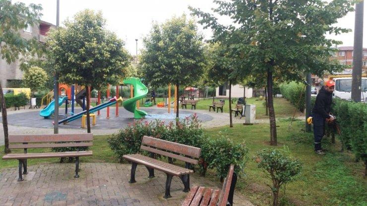 Gebze Belediyesi parkları temizliyor