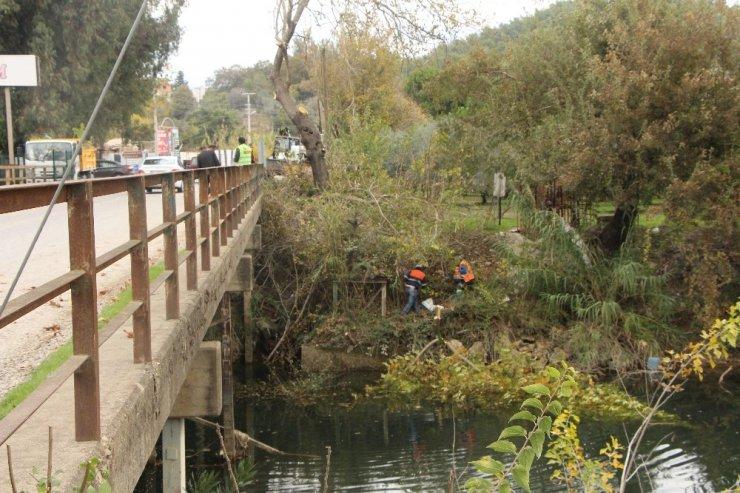 Naras Köprü girişinde bitkiler temizlendi