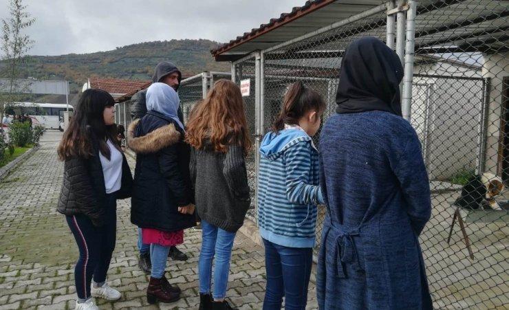 Liselilerden hayvan barınağına mama desteği