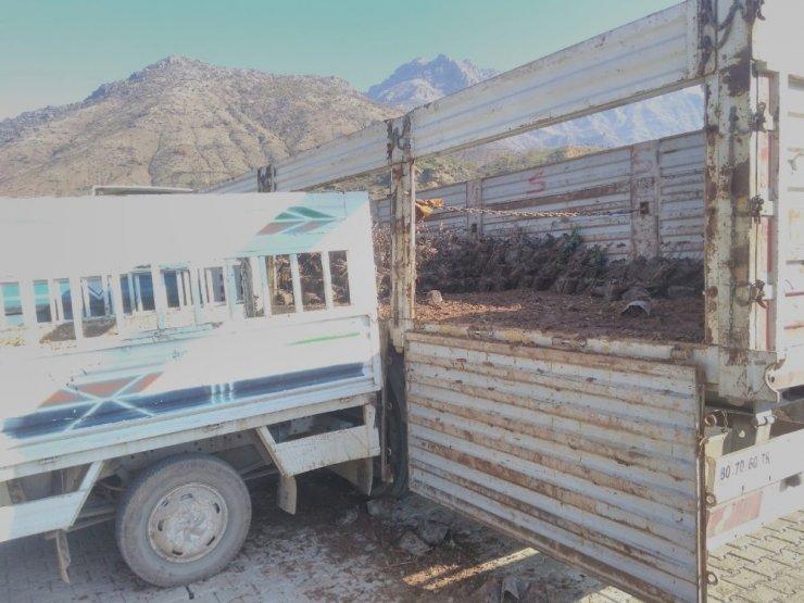 Sason'da 20 bin fıstık fidanı dağıtıldı