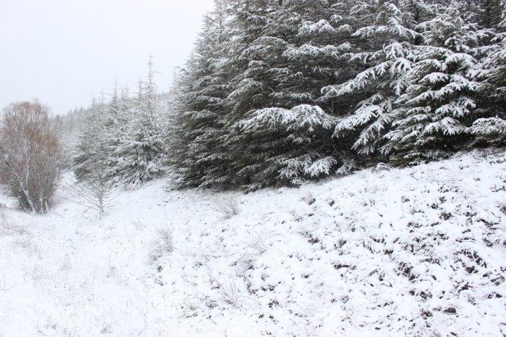Eskişehir'de yoğun kar yağışı