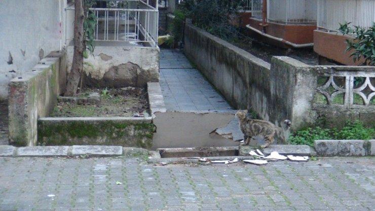 Manavgat'ta kağıt toplayıcı kadınlar rögar kapağını çaldı