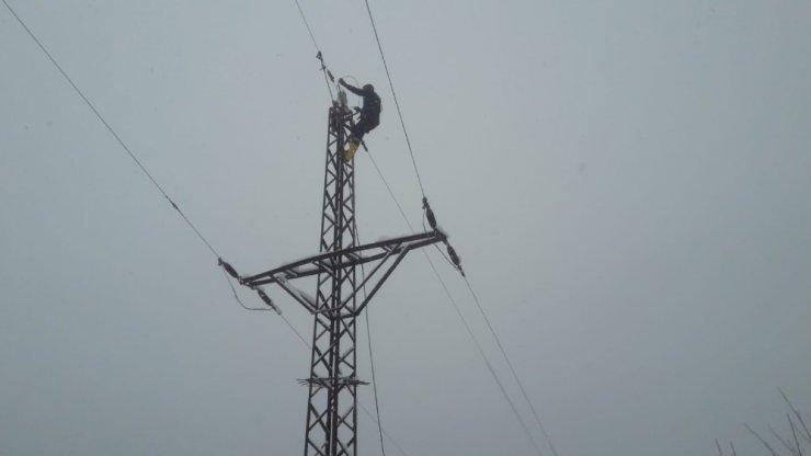 Kar yağışı ağaçları devirdi, elektrik hatlarına zarar verdi