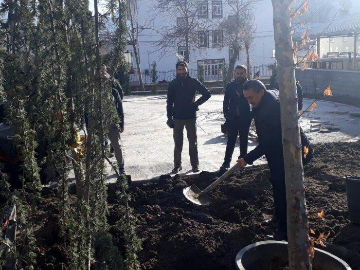 Başkan Tutal, Millet Parkı'na ağaç dikti